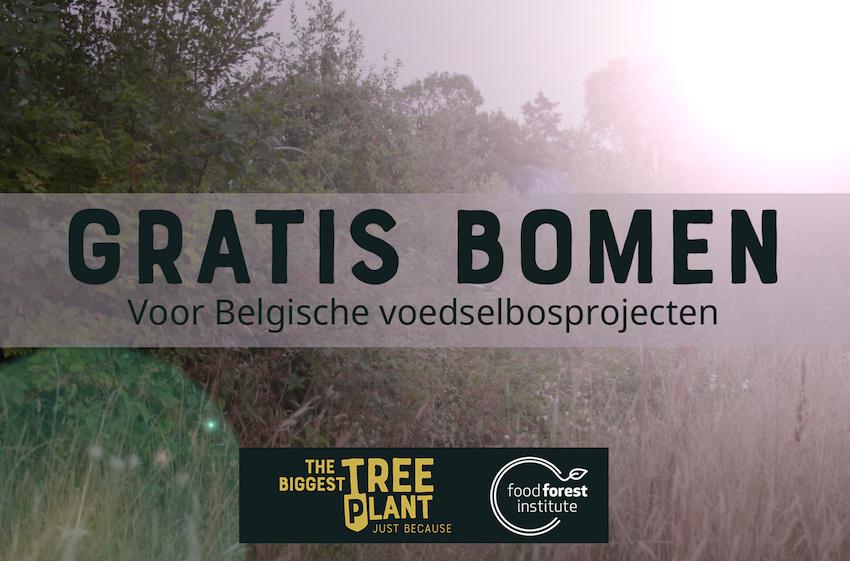 gratis bomen food forest institute